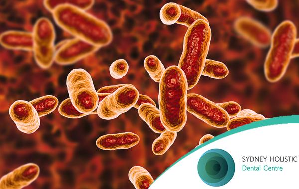 oral-microbiome_SHDC